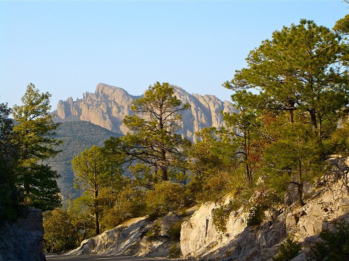 Аризона: Парк 'Chiricahua' - CHIRICAHUA NATIONAL MONUMENT 14692