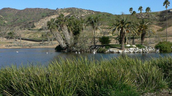 Парк Диких Животных (Wild Animal Park), San Diego 89372
