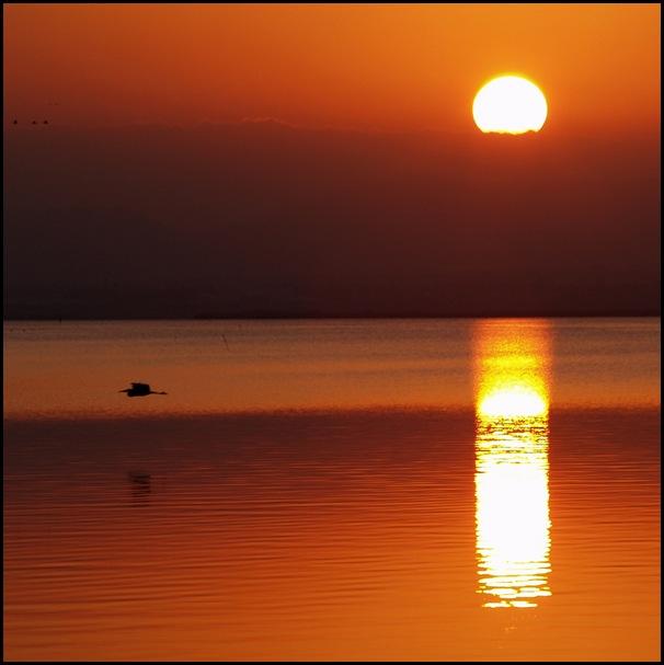 Сурья (санскр. — «Солнце»)