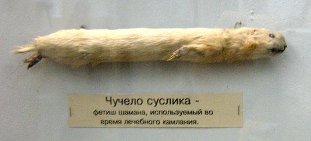 суслик - фетиш шамана применяемый при лечебном камлании