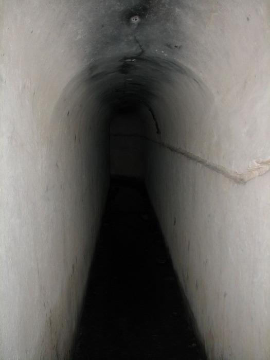 Таракановский форт 89325