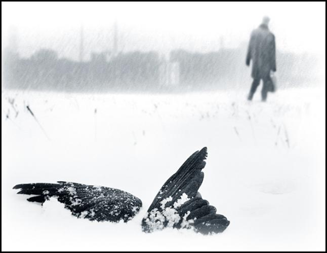Украинский фотохудожник Станислав Одягайло