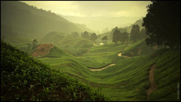 Юго-Восточная Азия фотографа Валерия Кочергина