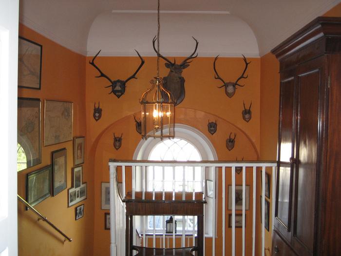Замок Глайн (Glin Castle) графство Лимерик 47432