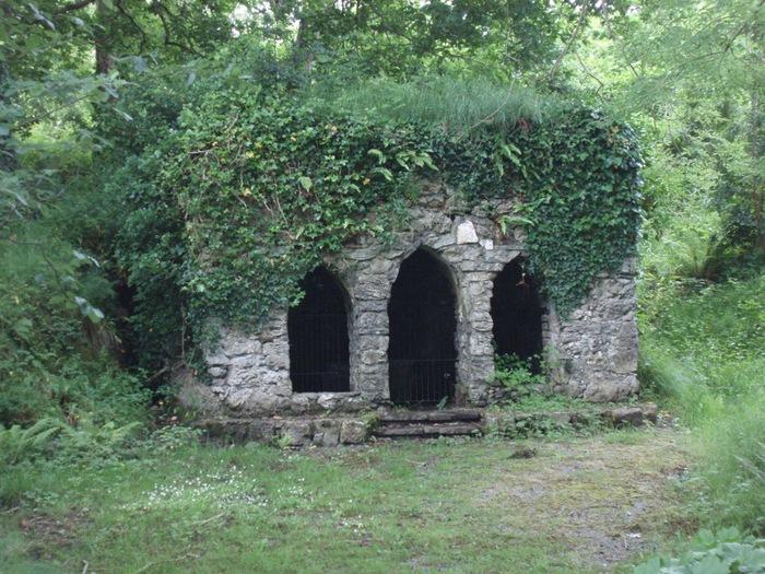 Замок Глайн (Glin Castle) графство Лимерик 40299