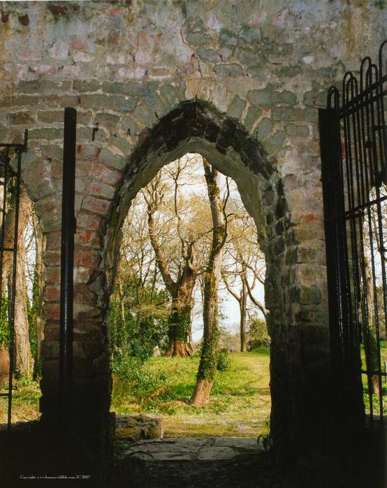 Замок Глайн (Glin Castle) графство Лимерик 52526