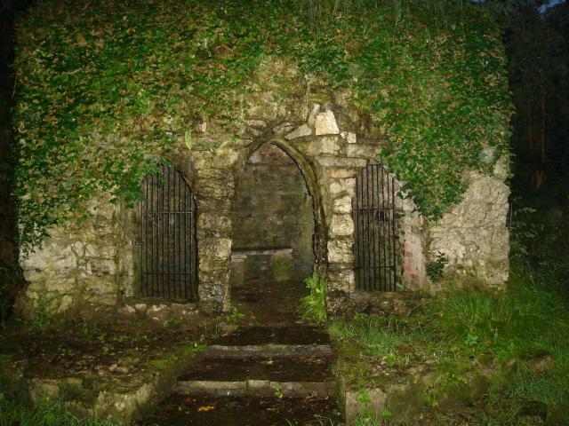 Замок Глайн (Glin Castle) графство Лимерик 15845