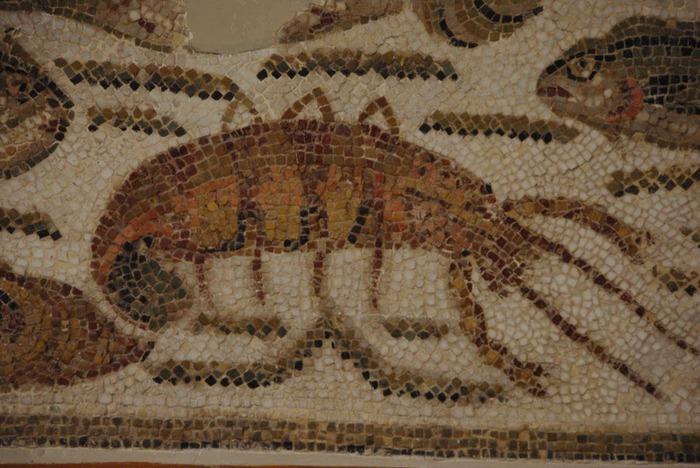Le musee national du Bardo / Музей Бардо (Тунис) 31855