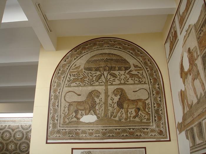 Le musee national du Bardo / Музей Бардо (Тунис) 14442