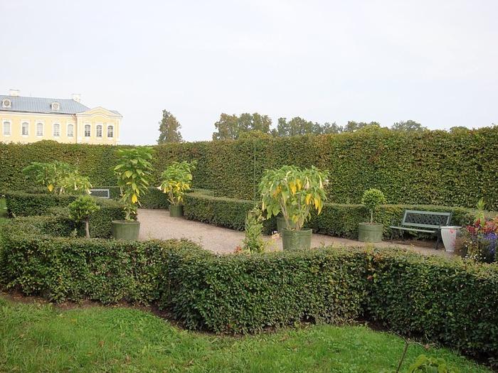 Rundales Castle - Рундальский дворец 24870
