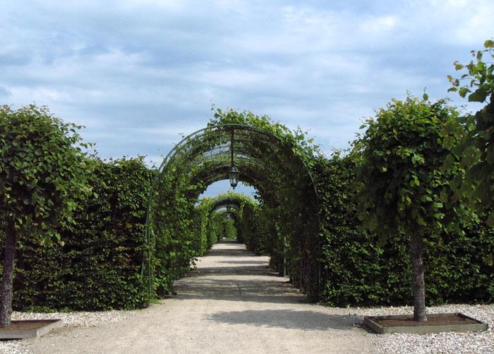 Rundales Castle - Рундальский дворец 21227