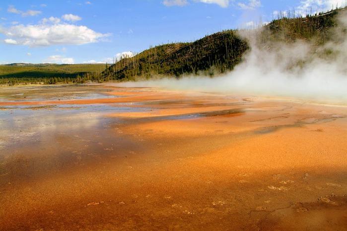 Национальный Парк Йеллоустоуна (Yellowstone National Park) 66306