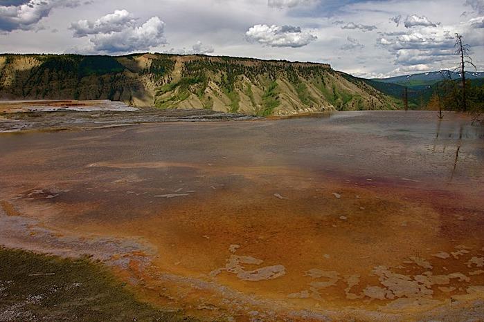 Национальный Парк Йеллоустоуна (Yellowstone National Park) 28328