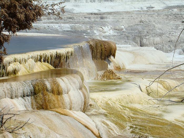 Национальный Парк Йеллоустоуна (Yellowstone National Park) 27764