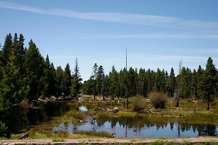 Национальный Парк Йеллоустоуна (Yellowstone National Park) 36659