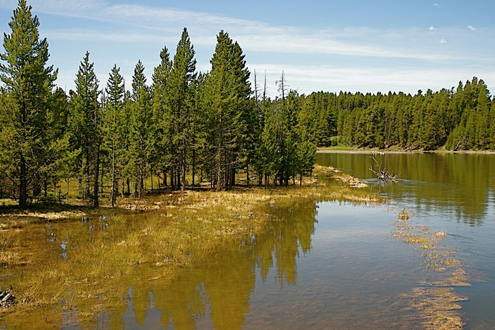 Национальный Парк Йеллоустоуна (Yellowstone National Park) 44774