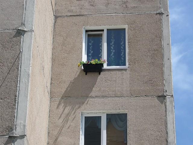 Цветник под окнами