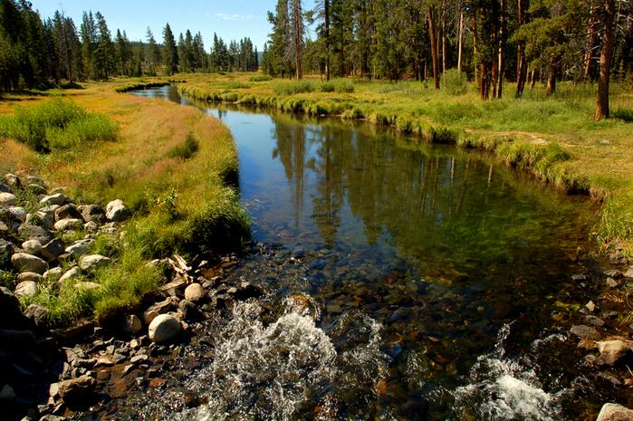 Национальный Парк Йеллоустоуна (Yellowstone National Park) 23891