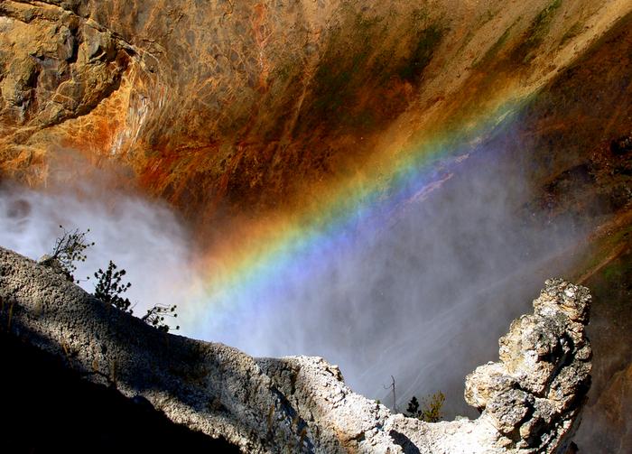 Национальный Парк Йеллоустоуна (Yellowstone National Park) 36173