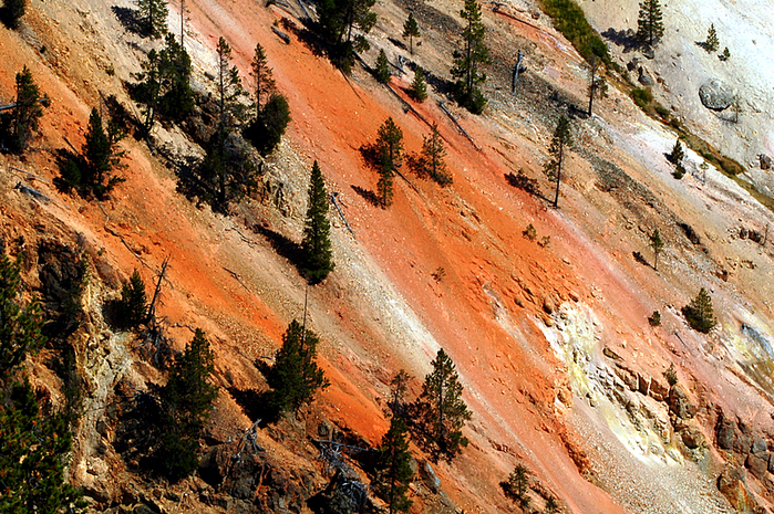 Национальный Парк Йеллоустоуна (Yellowstone National Park) 18908