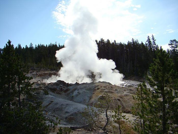 Национальный Парк Йеллоустоуна (Yellowstone National Park) 10346