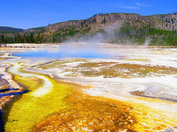 Национальный Парк Йеллоустоуна (Yellowstone National Park) 61023