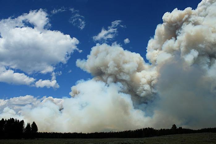 Национальный Парк Йеллоустоуна (Yellowstone National Park) 65021