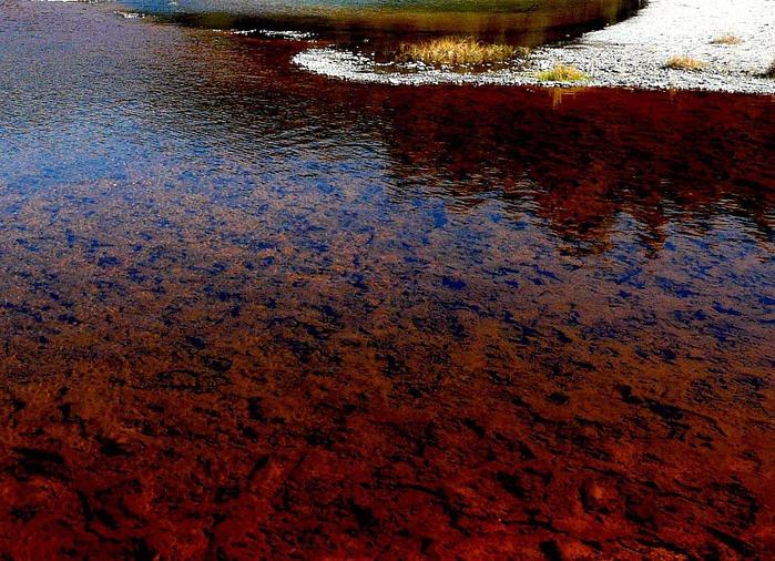 Национальный Парк Йеллоустоуна (Yellowstone National Park) 75671
