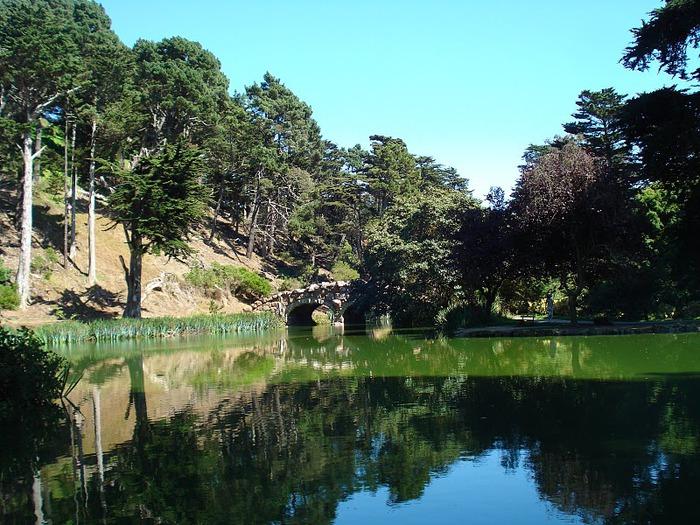 Японский чайный сад -(Hakone Japanese Tea Garden) 17355