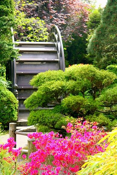 Японский чайный сад -(Hakone Japanese Tea Garden) 61882