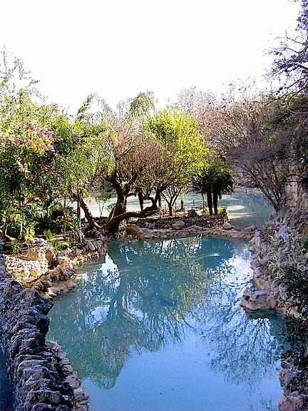 Японский чайный сад -(Hakone Japanese Tea Garden) 17196