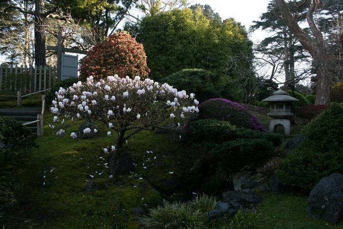 Японский чайный сад -(Hakone Japanese Tea Garden) 93392
