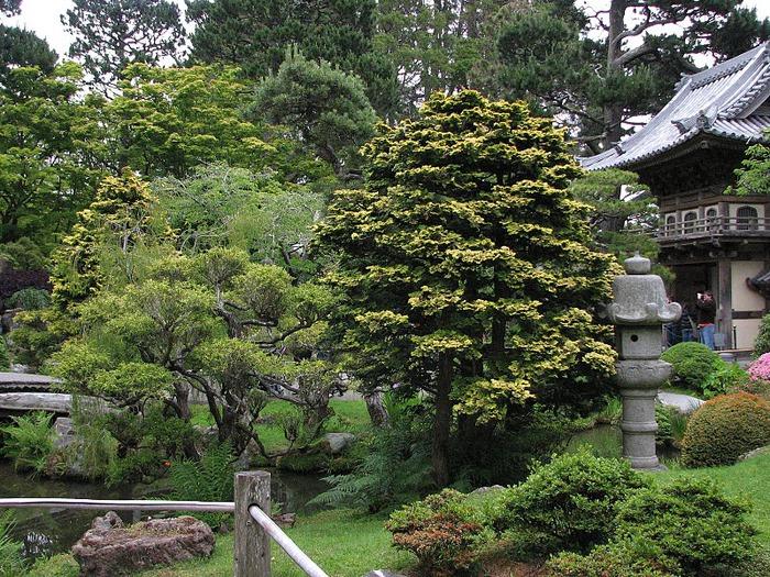 Японский чайный сад -(Hakone Japanese Tea Garden) 84640