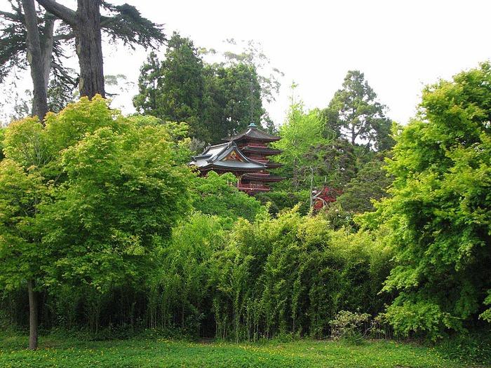 Японский чайный сад -(Hakone Japanese Tea Garden) 24605