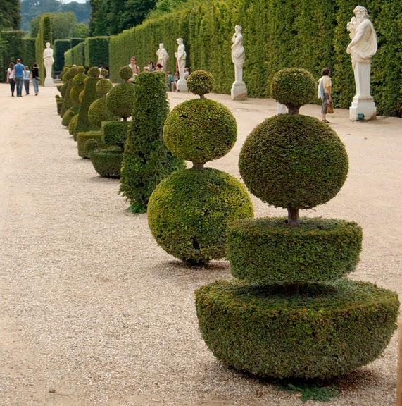 Поедем в царственный Версаль-2 15506