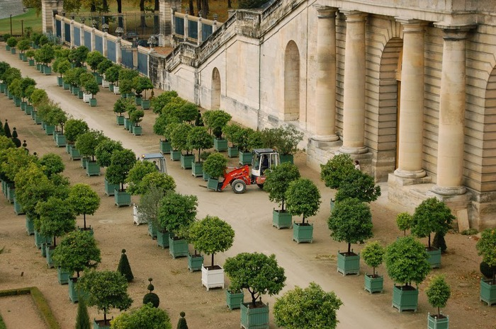 Поедем в царственный Версаль-2 71917