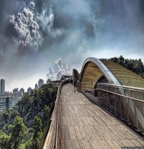 Самые креативные мосты нашей планеты!