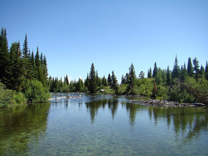 Национальный парк - Гранд Тетон 85018