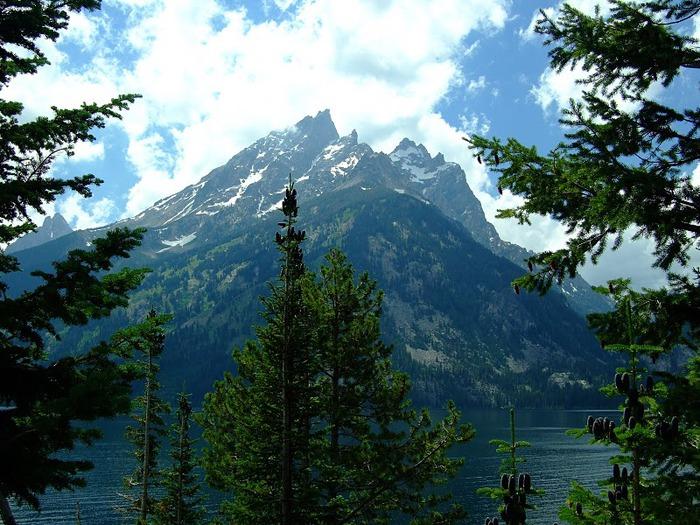 Национальный парк - Гранд Тетон 89253