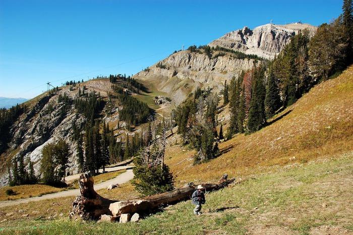 Национальный парк - Гранд Тетон 16685