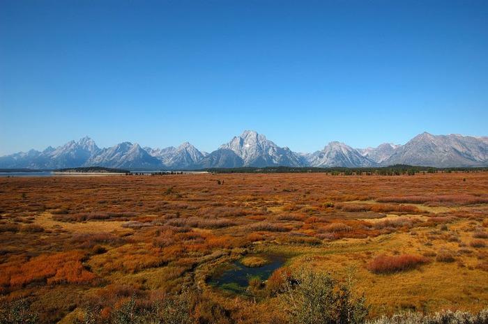 Национальный парк - Гранд Тетон 44968