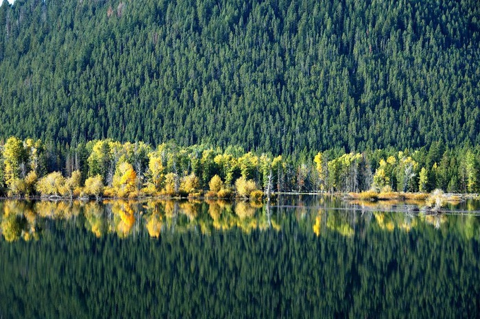 Национальный парк - Гранд Тетон 82212