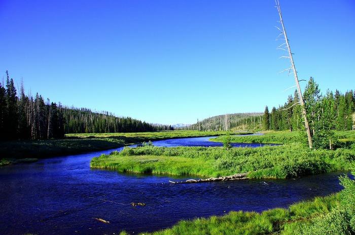 Национальный парк - Гранд Тетон 30357