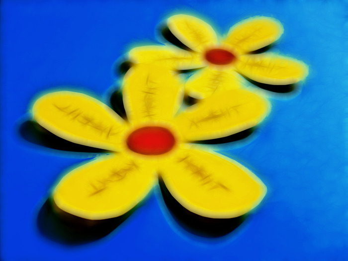 цветы, гадания, любит