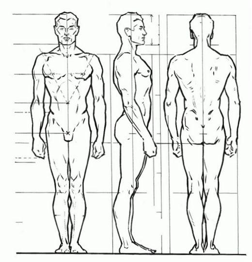 как правильно рисовать тело