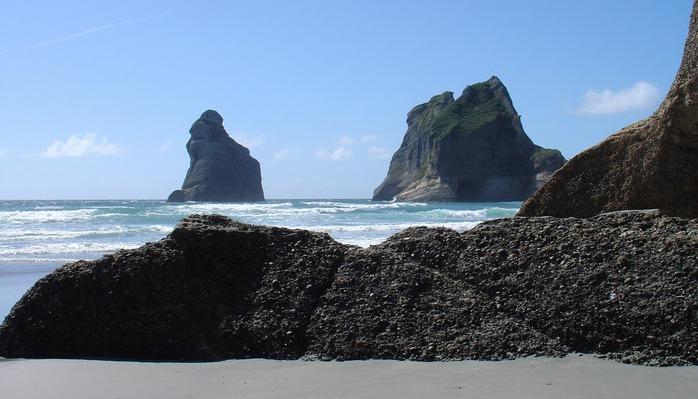 Новая Зеландия — это где? 59165