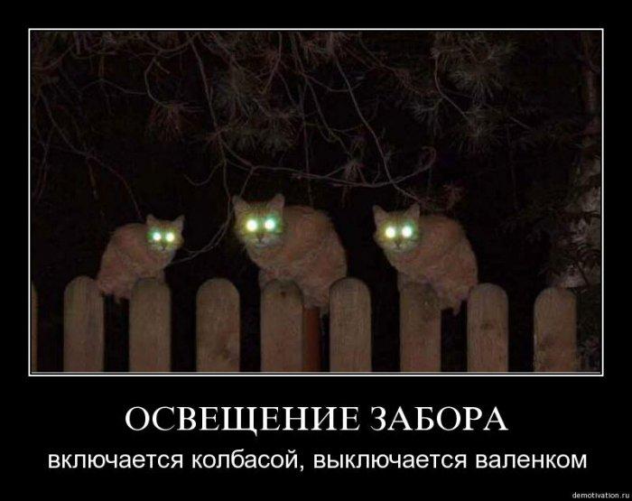 http://img1.liveinternet.ru/images/attach/c/1//59/873/59873523_1274865148_tai4erodebfb.jpg