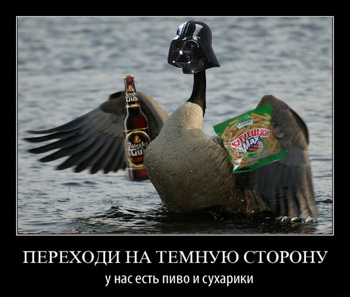 http://img1.liveinternet.ru/images/attach/c/1//59/960/59960175_temnaya_storona.jpg