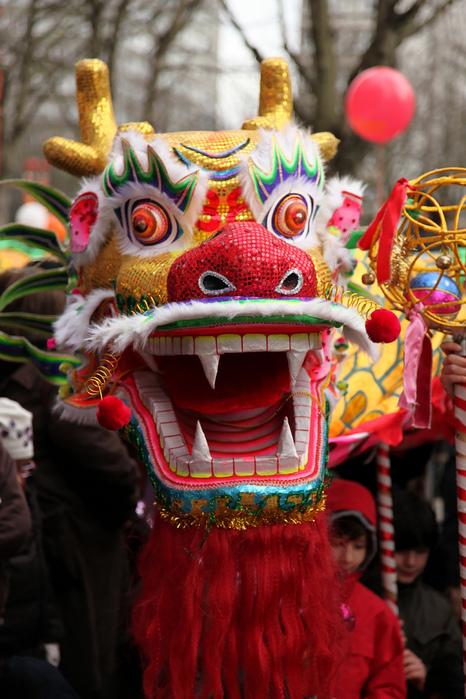 Китайский Новый год в Париже 28673