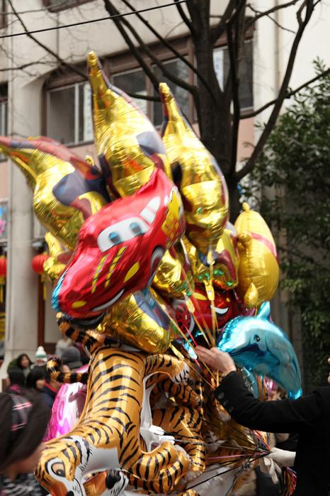 Китайский Новый год в Париже 48190